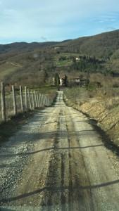 מחוז קיאנטי שבאיטליה, שביל עפר, צילמה נעמה יוסטינג